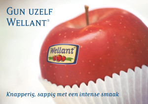 Wellant appel